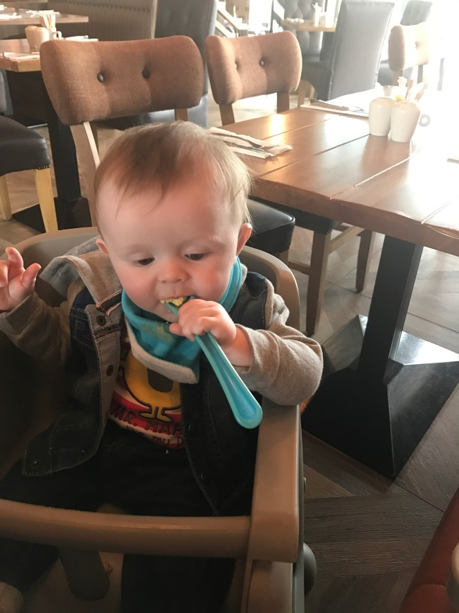 Baby Led Weaning 8 months