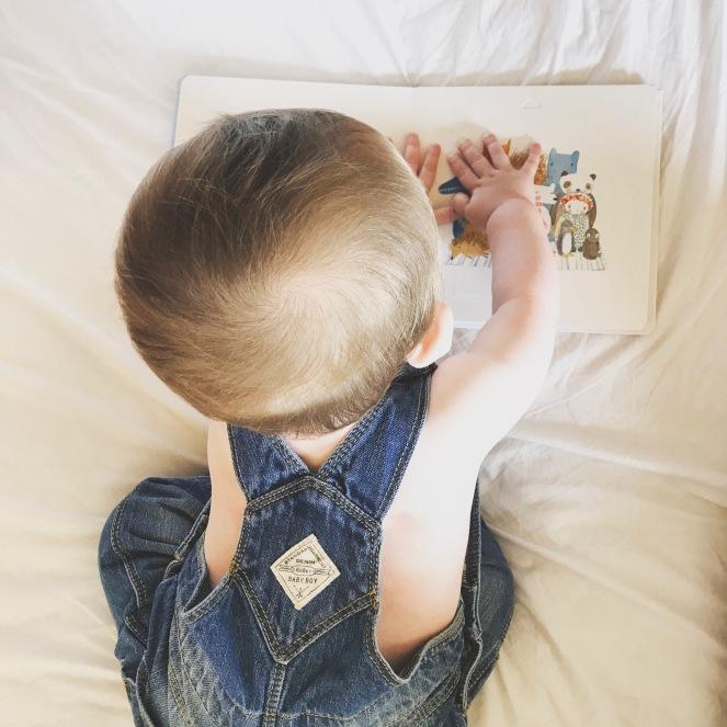 Montessori books for babies