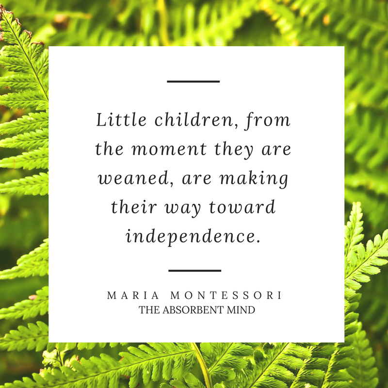 Maria Montessori Quotes for parents the best Montessori Quotes about infancy. A short summary of essential quotes for parent's starting their Montessori journey.