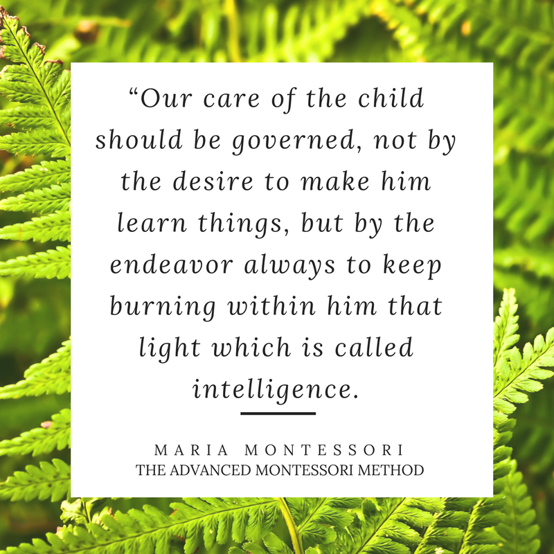 The Best Montessori Quotes - The Absorbent Mind. The 5 best quotes from Maria Montessori about the child under 3
